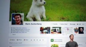 """Timeline de Facebook """"a la cárcel"""" por plagio"""